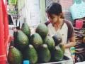 中国将大量采购缅甸高质量牛油果